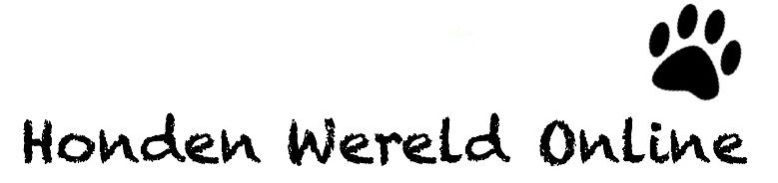 cropped-Logo-1-2